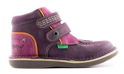 440070-10-143 WAPA Violet OR