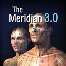 Meri30_Icon.jpg