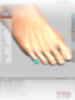 Img_combi_foot.png
