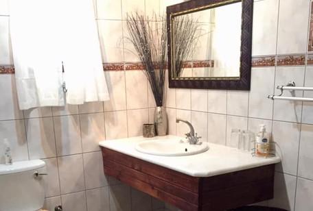 Zebra_Bathroom