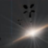 BHUYANTRA%20ORGANICS-01_edited.png