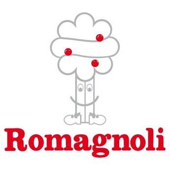 romagnoli_edited.jpg