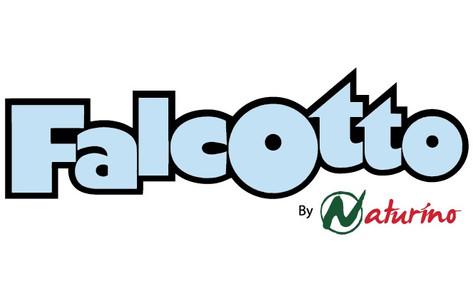 falcotto_edited.jpg