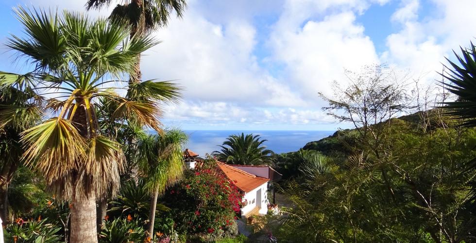 La Palma Bungalow.JPG