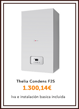 Thelia condens f25.png