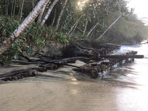 Nuevos restos de aparente embarcación salen en Manzanillo.