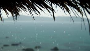 Comisión de Emergencias declara alerta verde en la región Huetar.
