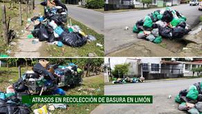 Esto dice la Municipalidad de Limón sobre la recolección de basura.