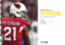 PlayerProfiles_Patrick-Peterson.PNG