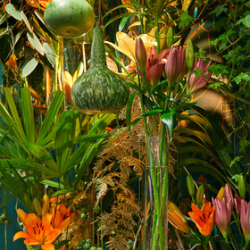 Detail lily stand