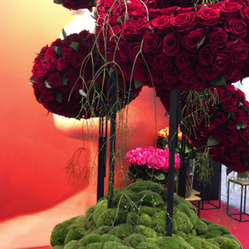Rose grower stand Holland