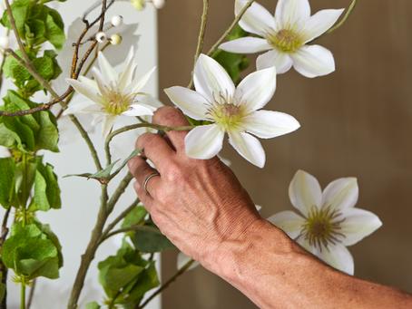 Optimaal genieten van zijden bloemen en planten