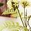 Thumbnail: Agapanthus en varen boeket