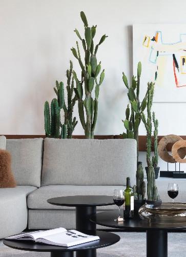zijden cactussen in een modern interieur