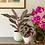 Thumbnail: Phalaenopsis Orchidee