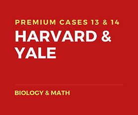 Copy of Copy of PREMIUM CLASS - HARVARD