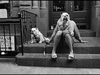 """""""O melhor amigo do cão é o homem"""""""