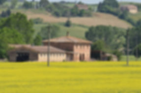 Workshop Luzes da Toscana Emidio Luisi