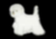 ウエスト・ハイランド・ホワイト・テリア/WEST HIGHLAND WHITE TERRIER