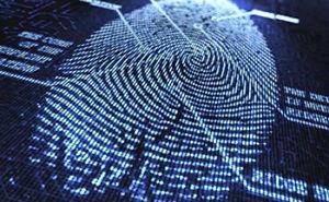 cyber-crime-500x308.jpg