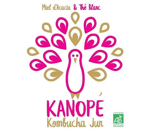 KANOPÉ - KOMBUCHA JUN - Miel d'accacia - Thé blanc (33 cL)