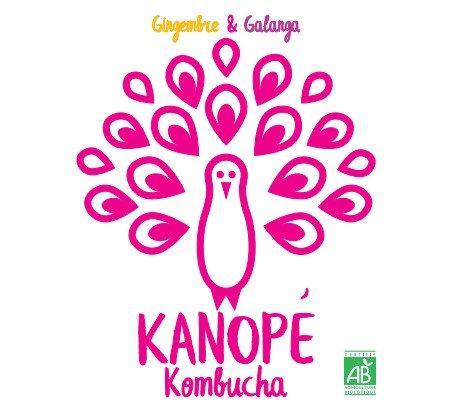 KANOPÉ - KOMBUCHA - Gingembre - Galanga (33cL)