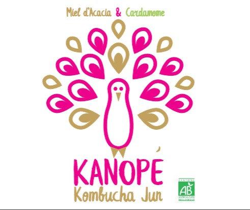 KANOPÉ - KOMBUCHA JUN - Miel d'accacia - Cardamone (33 cL)
