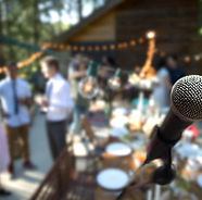 Wedding Singer on Stage _edited.jpg