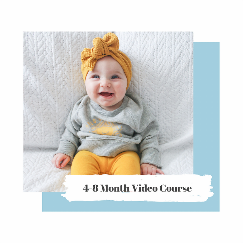 4-8 Month Video Course