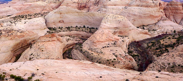 Escalante River Canyon, near Boulder Utah