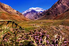 Mendoza - Aconcagua.jpg