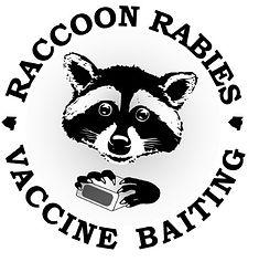 Raccoon Vaccination.jpg