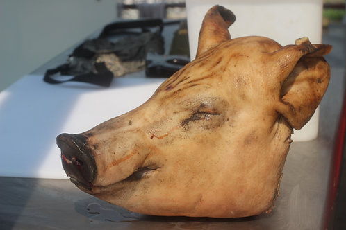 Whole Pig Heads