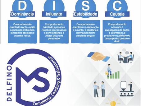Análise  do Perfil Comportamental DISC