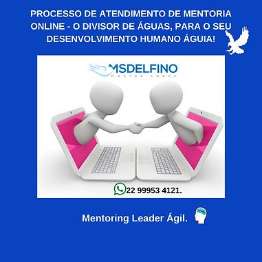MENTORIA ONLINE - SEU DIVISOR.png