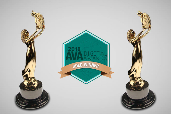 A Willing Participant 2-Time Gold Winner at AVA Awards
