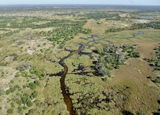 ...in a plain - over the Okavango Delta