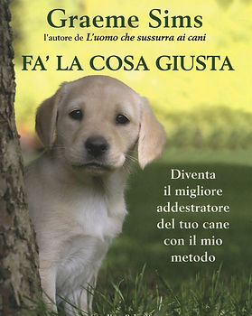 Fa' la cosa giusta, book written by Graeme Sims.
