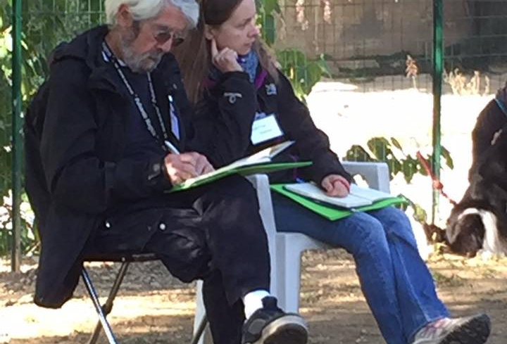 Graeme and Valentina taking notes and watching a dog and its human working (that are not included in the picture)