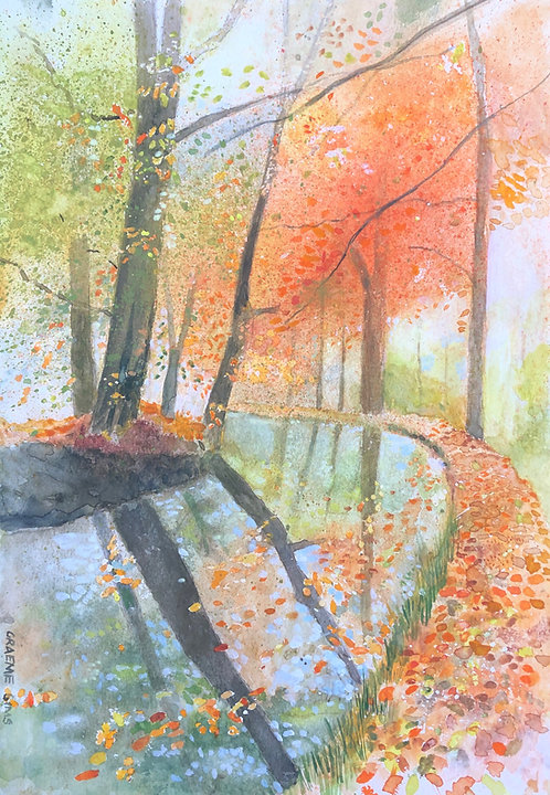 Autumnal Welsh path along the Brecon Beacons Canal, reddish leaves everywhere