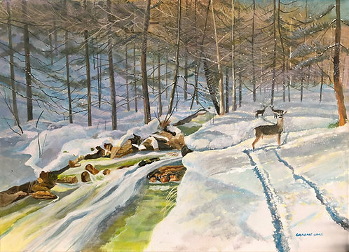 A snowy silent valley in Italy, with a stream, bare trees and some deers