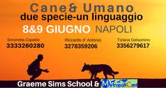 Cane & Umano: due specie-un linguaggio