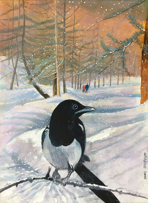 Snowy woodland with a Magpie on the foreground and two walking people in background