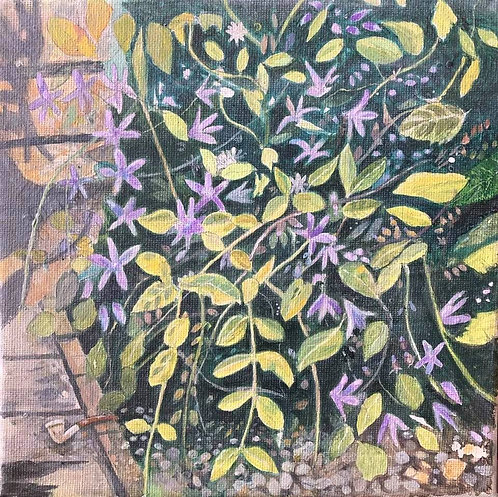 Particular of a garden bush: lilac flowers, green leaves and a pipe on the ground