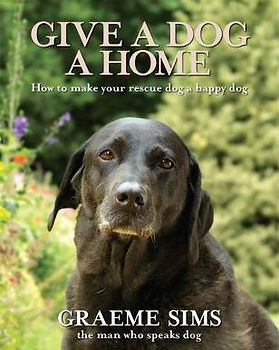 Give a dog a home