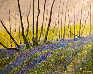 The blue woodland