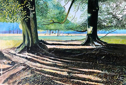 Two big tortuous trees with shadows on the ground and a huge field at distance with a man and his dog