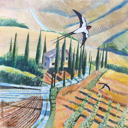 Birds over Tuscany