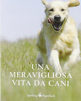Una meravigliosa vita da cani.jpg