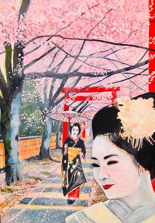 Cherry tree Geisha